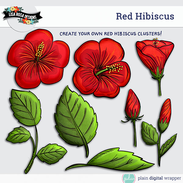 Red hibiscus flowers and leaves