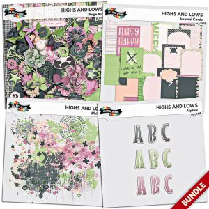 Highs and Lows Scrapbook by Lisa Rosa Designs